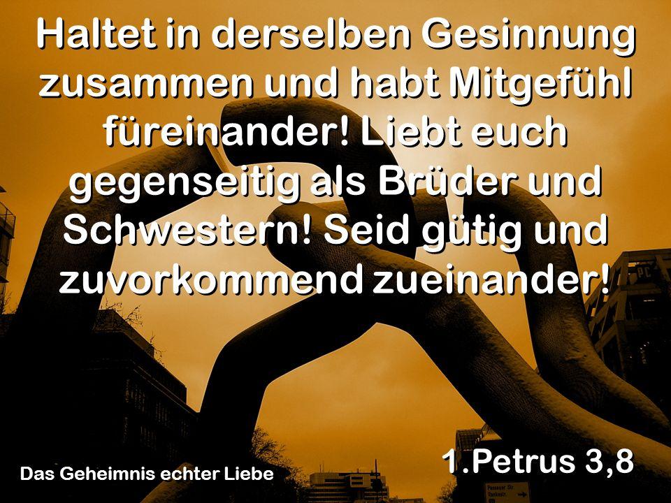 1.Petrus 3,8 Haltet in derselben Gesinnung zusammen und habt Mitgefühl füreinander! Liebt euch gegenseitig als Brüder und Schwestern! Seid gütig und z