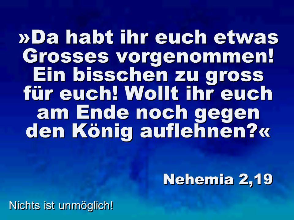 »Da habt ihr euch etwas Grosses vorgenommen! Ein bisschen zu gross für euch! Wollt ihr euch am Ende noch gegen den König auflehnen?« Nehemia 2,19