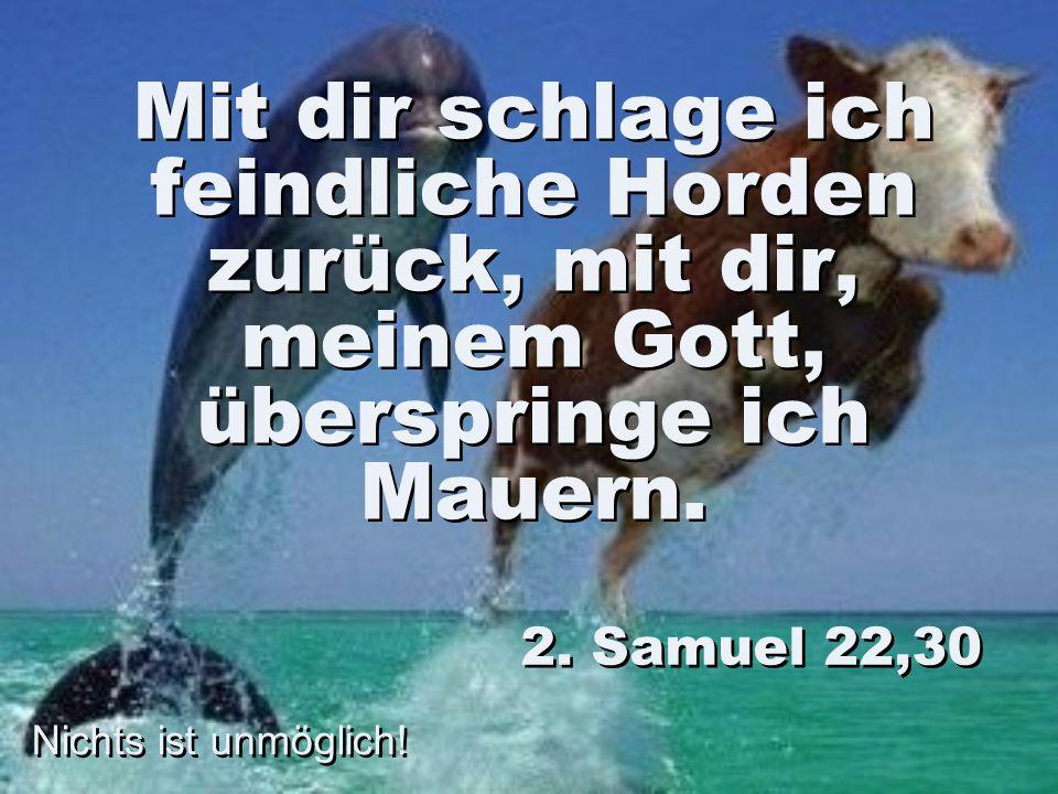 Mit dir schlage ich feindliche Horden zurück, mit dir, meinem Gott, überspringe ich Mauern. 2. Samuel 22,30