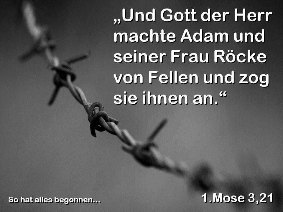 Und Gott der Herr machte Adam und seiner Frau Röcke von Fellen und zog sie ihnen an.