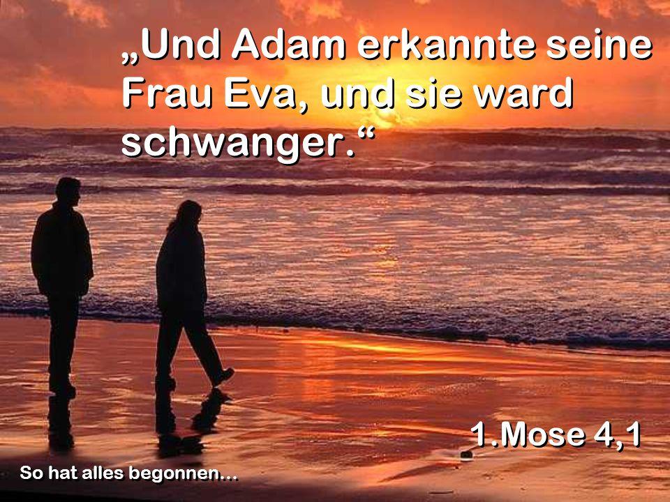 Und Adam erkannte seine Frau Eva, und sie ward schwanger. 1.Mose 4,1 So hat alles begonnen…