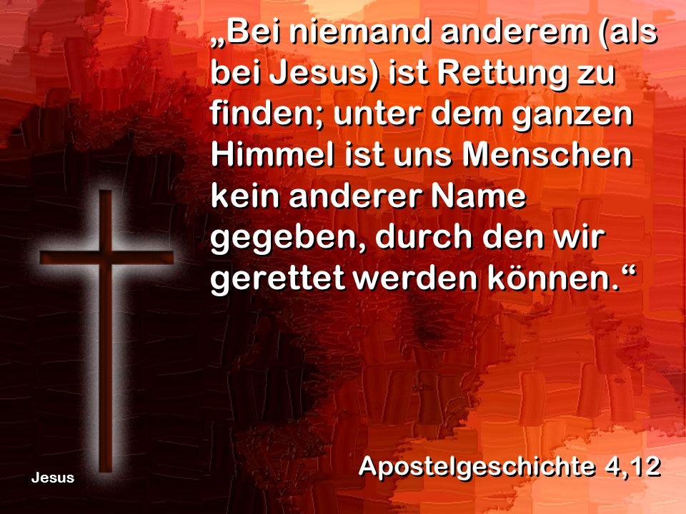 Bei niemand anderem (als bei Jesus) ist Rettung zu finden; unter dem ganzen Himmel ist uns Menschen kein anderer Name gegeben, durch den wir gerettet