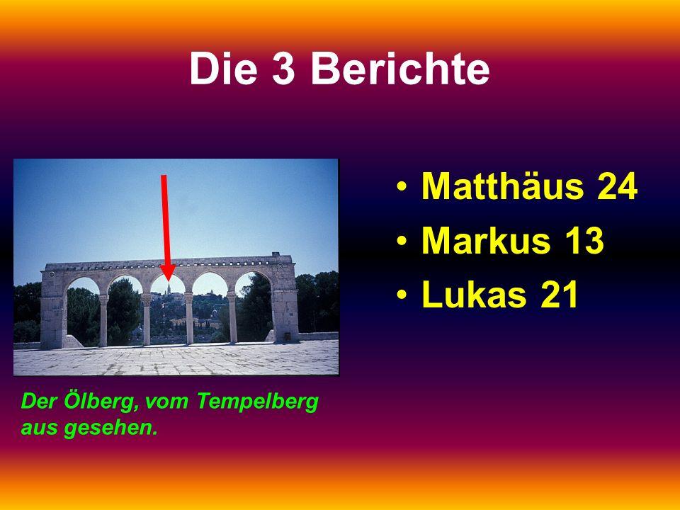 Die 3 Berichte Matthäus 24 Markus 13 Lukas 21 Der Ölberg, vom Tempelberg aus gesehen.