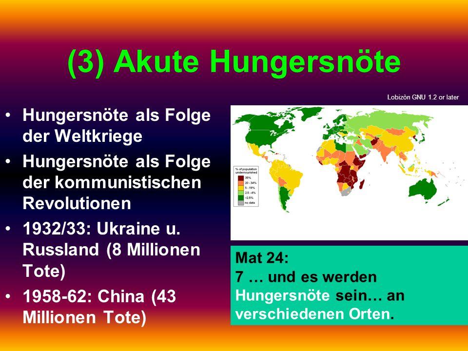 (3) Akute Hungersnöte Hungersnöte als Folge der Weltkriege Hungersnöte als Folge der kommunistischen Revolutionen 1932/33: Ukraine u. Russland (8 Mill