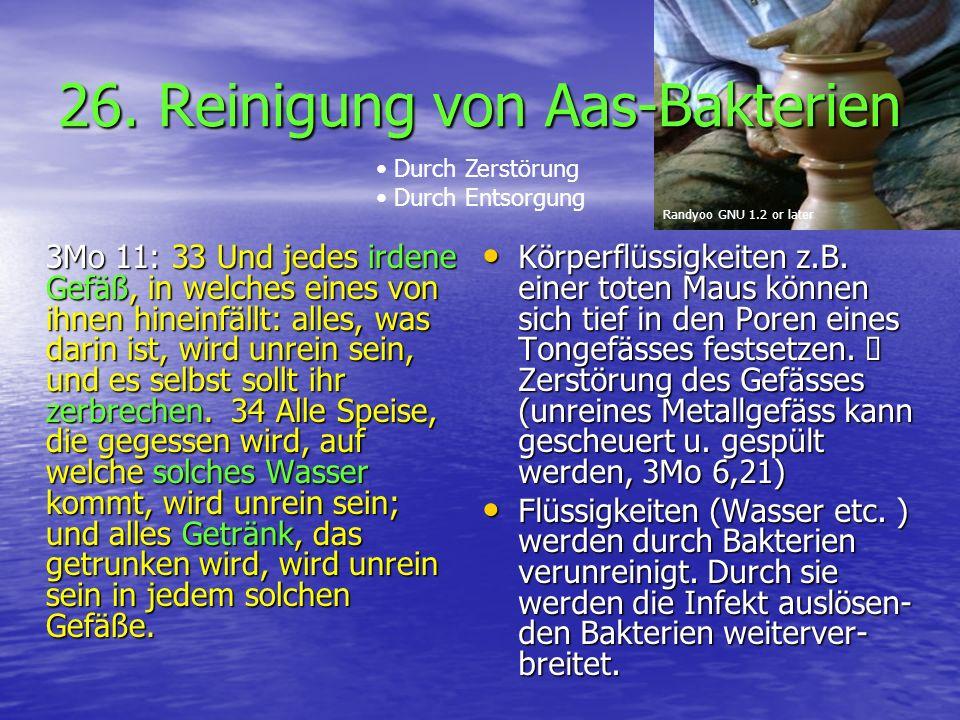 26. Reinigung von Aas-Bakterien 3Mo 11: 33 Und jedes irdene Gefäß, in welches eines von ihnen hineinfällt: alles, was darin ist, wird unrein sein, und