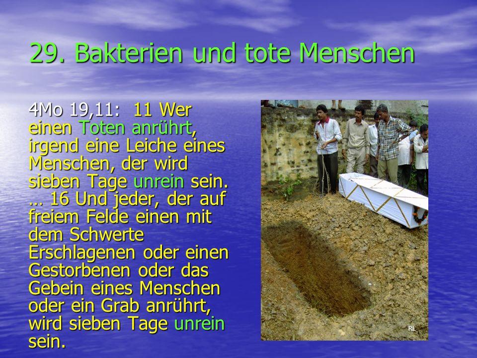 29. Bakterien und tote Menschen 4Mo 19,11: 11 Wer einen Toten anrührt, irgend eine Leiche eines Menschen, der wird sieben Tage unrein sein. … 16 Und j