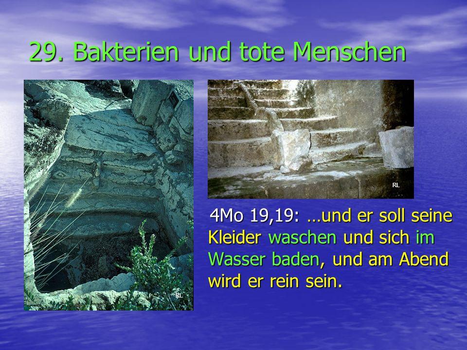 29. Bakterien und tote Menschen 4Mo 19,19: …und er soll seine Kleider waschen und sich im Wasser baden, und am Abend wird er rein sein. 4Mo 19,19: …un