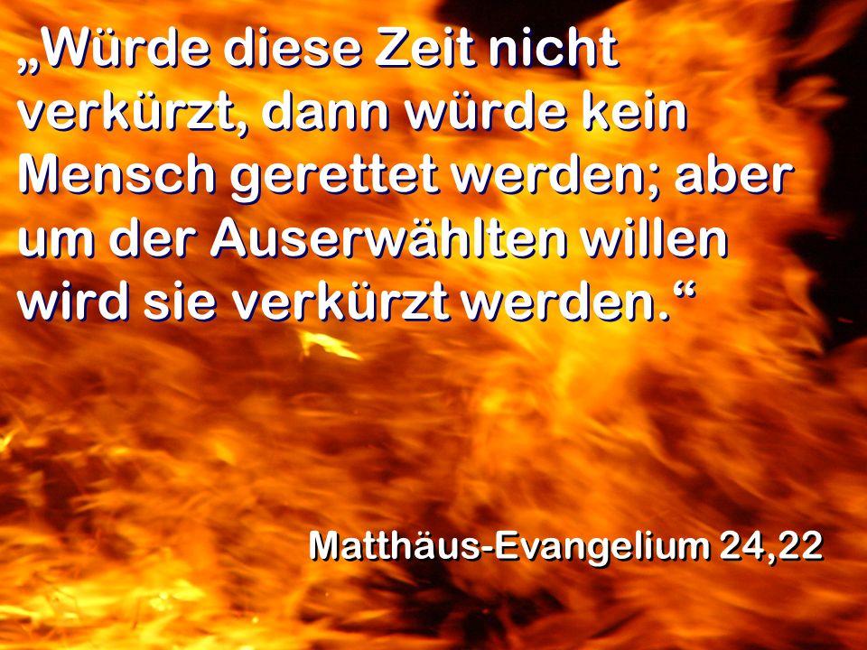 Würde diese Zeit nicht verkürzt, dann würde kein Mensch gerettet werden; aber um der Auserwählten willen wird sie verkürzt werden. Matthäus-Evangelium