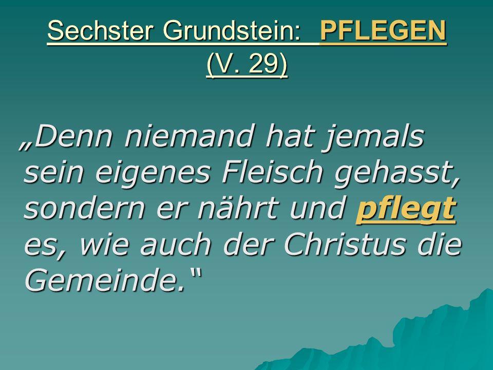 Sechster Grundstein: PFLEGEN (V. 29) Denn niemand hat jemals sein eigenes Fleisch gehasst, sondern er nährt und pflegt es, wie auch der Christus die G