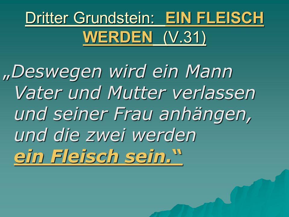Dritter Grundstein: EIN FLEISCH WERDEN (V.31) Deswegen wird ein Mann Vater und Mutter verlassen und seiner Frau anhängen, und die zwei werden ein Flei