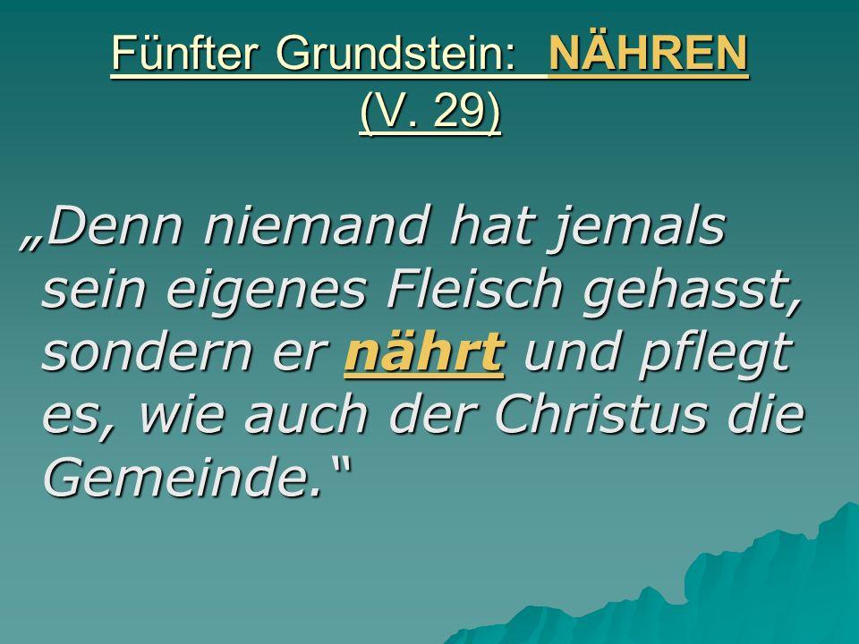 Fünfter Grundstein: NÄHREN (V. 29) Denn niemand hat jemals sein eigenes Fleisch gehasst, sondern er nährt und pflegt es, wie auch der Christus die Gem