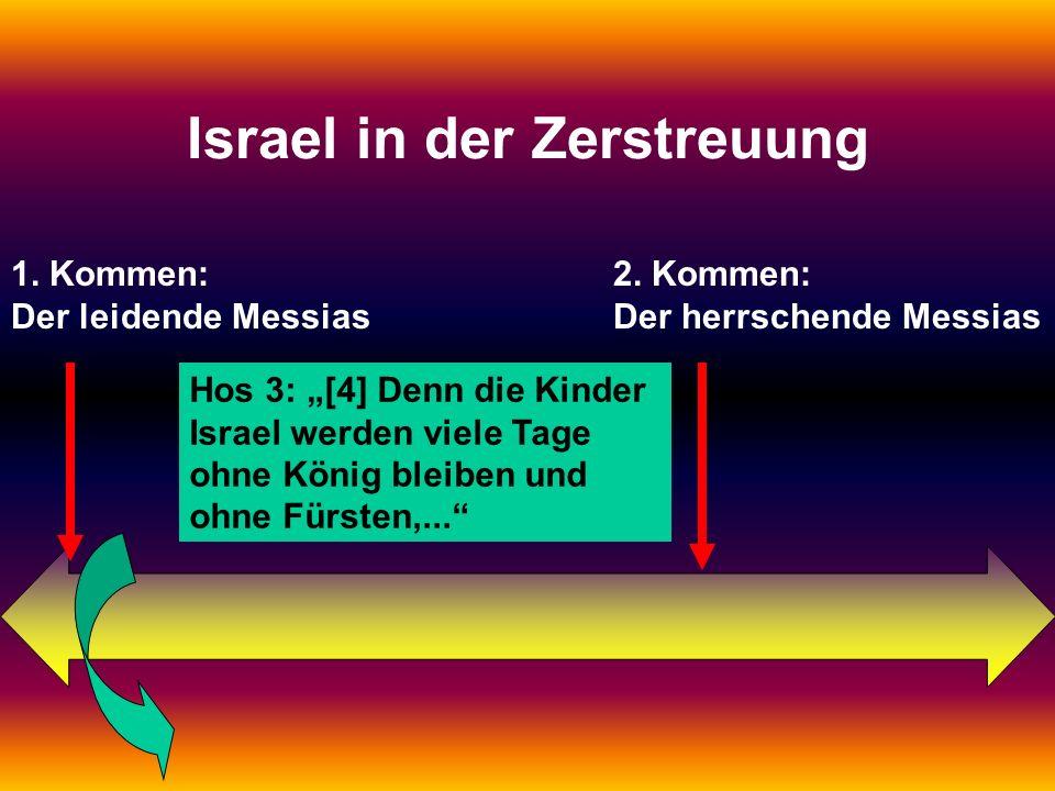 1. Kommen: Der leidende Messias 2. Kommen: Der herrschende Messias Israel in der Zerstreuung Hos 3: [4] Denn die Kinder Israel werden viele Tage ohne