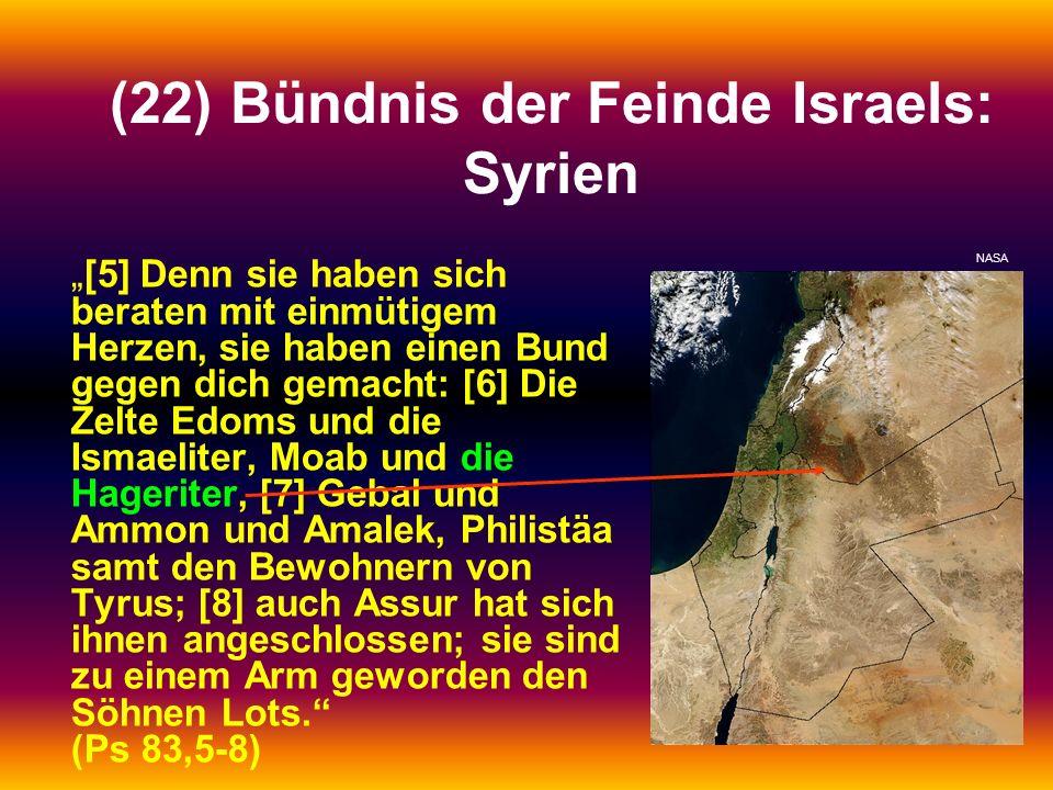 (22) Bündnis der Feinde Israels: Syrien [5] Denn sie haben sich beraten mit einmütigem Herzen, sie haben einen Bund gegen dich gemacht: [6] Die Zelte