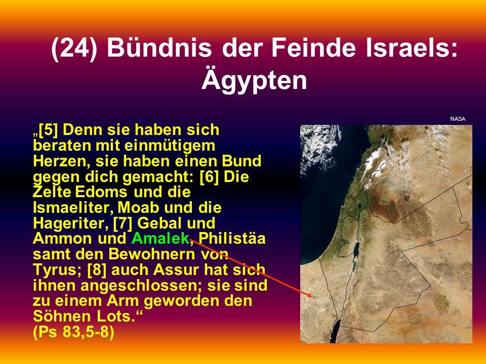 (24) Bündnis der Feinde Israels: Ägypten [5] Denn sie haben sich beraten mit einmütigem Herzen, sie haben einen Bund gegen dich gemacht: [6] Die Zelte