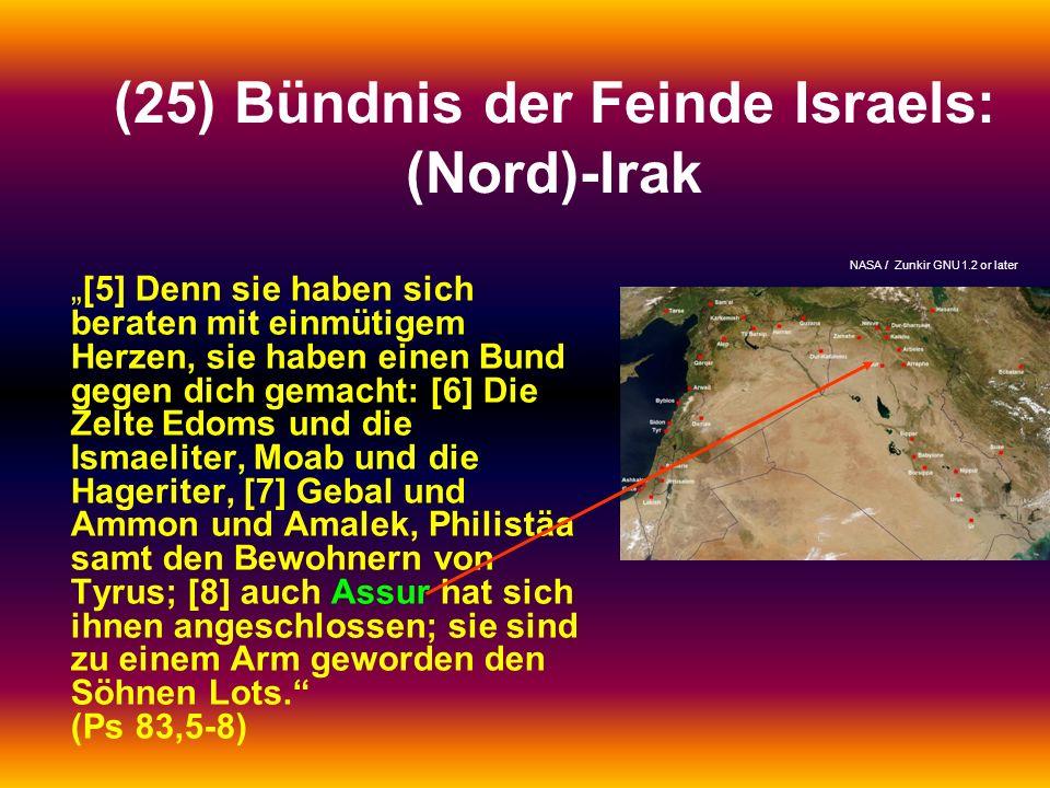 (25) Bündnis der Feinde Israels: (Nord)-Irak [5] Denn sie haben sich beraten mit einmütigem Herzen, sie haben einen Bund gegen dich gemacht: [6] Die Z