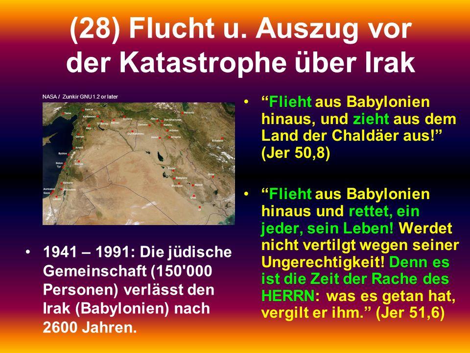 (28) Flucht u. Auszug vor der Katastrophe über Irak 1941 – 1991: Die jüdische Gemeinschaft (150'000 Personen) verlässt den Irak (Babylonien) nach 2600