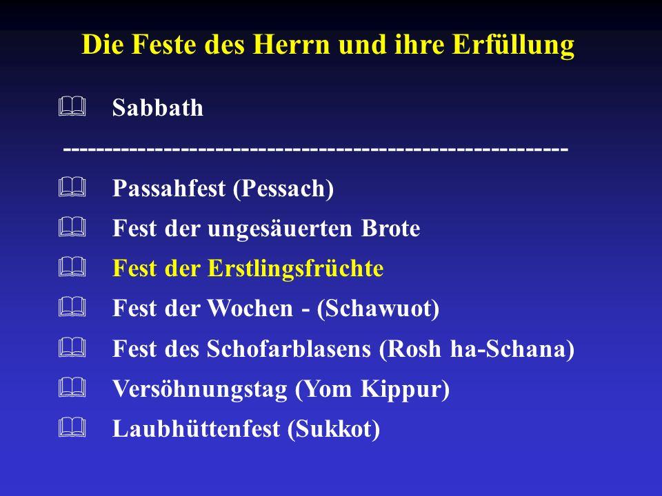 Die Feste des Herrn und ihre Erfüllung Sabbath ----------------------------------------------------------- Passahfest (Pessach) Fest der ungesäuerten