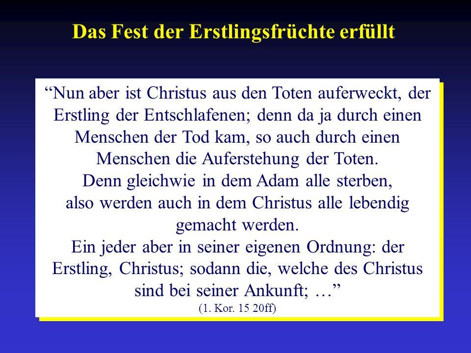 Das Fest der Erstlingsfrüchte erfüllt Nun aber ist Christus aus den Toten auferweckt, der Erstling der Entschlafenen; denn da ja durch einen Menschen
