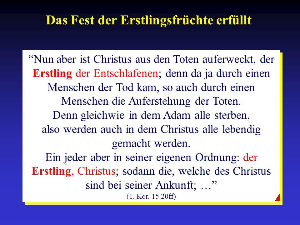 Das Fest der Erstlingsfrüchte erfüllt Erstling Nun aber ist Christus aus den Toten auferweckt, der Erstling der Entschlafenen; denn da ja durch einen