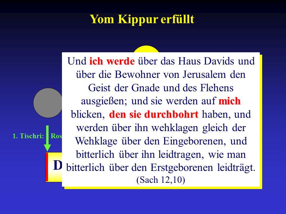 1. Tischri: Rosh ha-Schana 10. Tischri: Yom-Kippur 15.-21. Tischri: Sukkot Drangsalszeit ich werde mich densiedurchbohrt Und ich werde über das Haus D