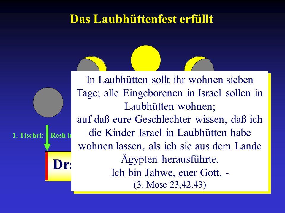 1. Tischri: Rosh ha-Schana 10. Tischri: Yom-Kippur 15.-21. Tischri: Sukkot Drangsalszeit Das Laubhüttenfest erfüllt In Laubhütten sollt ihr wohnen sie