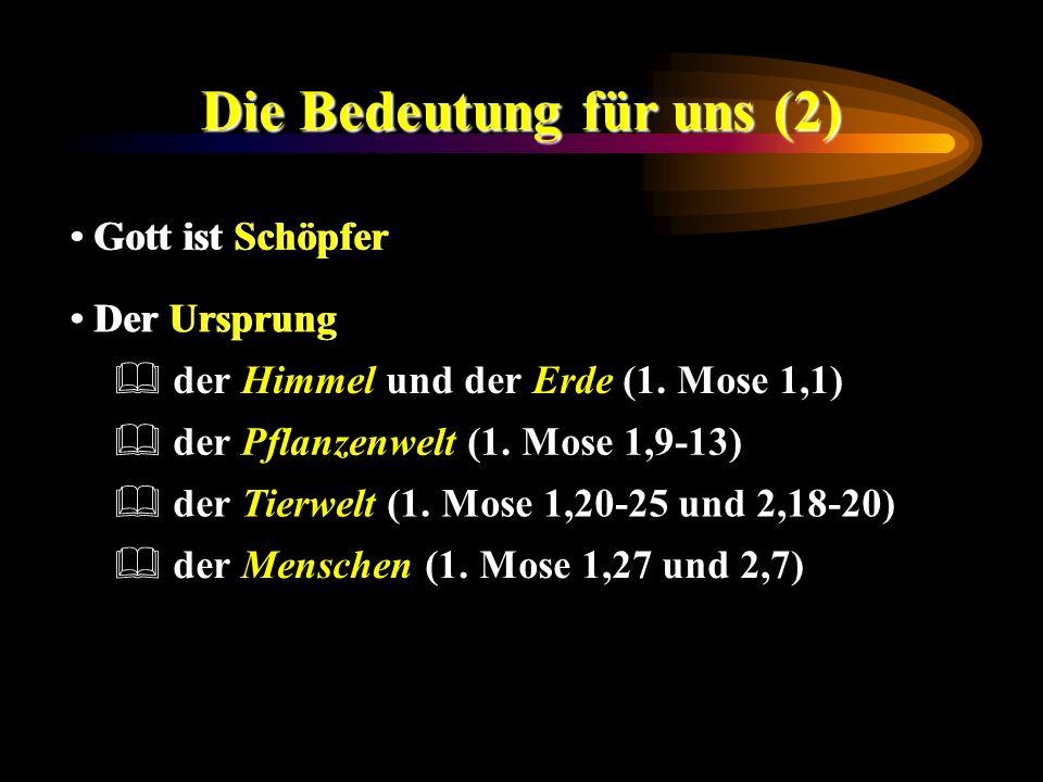 Die Bedeutung für uns (2) Gott ist Schöpfer Der Ursprung der Menschen (1. Mose 1,27 und 2,7) der Tierwelt (1. Mose 1,20-25 und 2,18-20) der Pflanzenwe