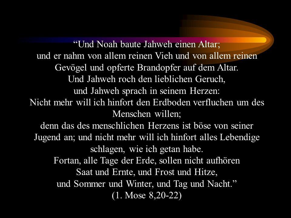 Und Noah baute Jahweh einen Altar; und er nahm von allem reinen Vieh und von allem reinen Gevögel und opferte Brandopfer auf dem Altar. Und Jahweh roc