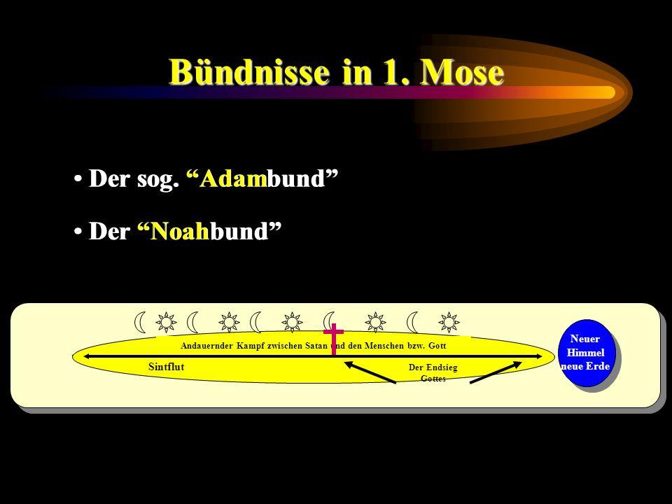Bündnisse in 1. Mose Der sog. Adambund Der Noahbund Andauernder Kampf zwischen Satan und den Menschen bzw. Gott Sintflut Der Endsieg Gottes Neuer Himm