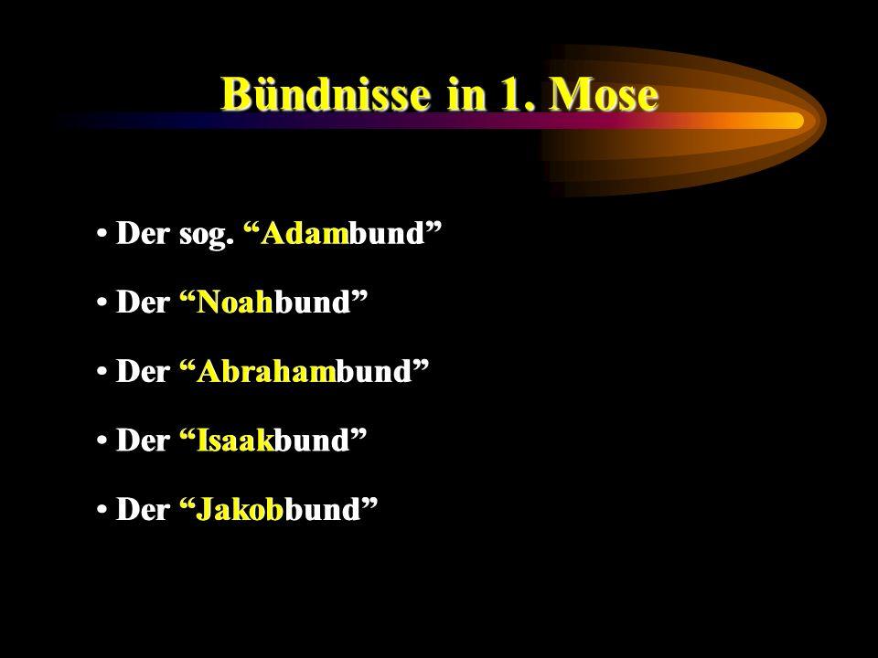 Bündnisse in 1. Mose Der sog. Adambund Der Noahbund Der Abrahambund Der Isaakbund Der Jakobbund