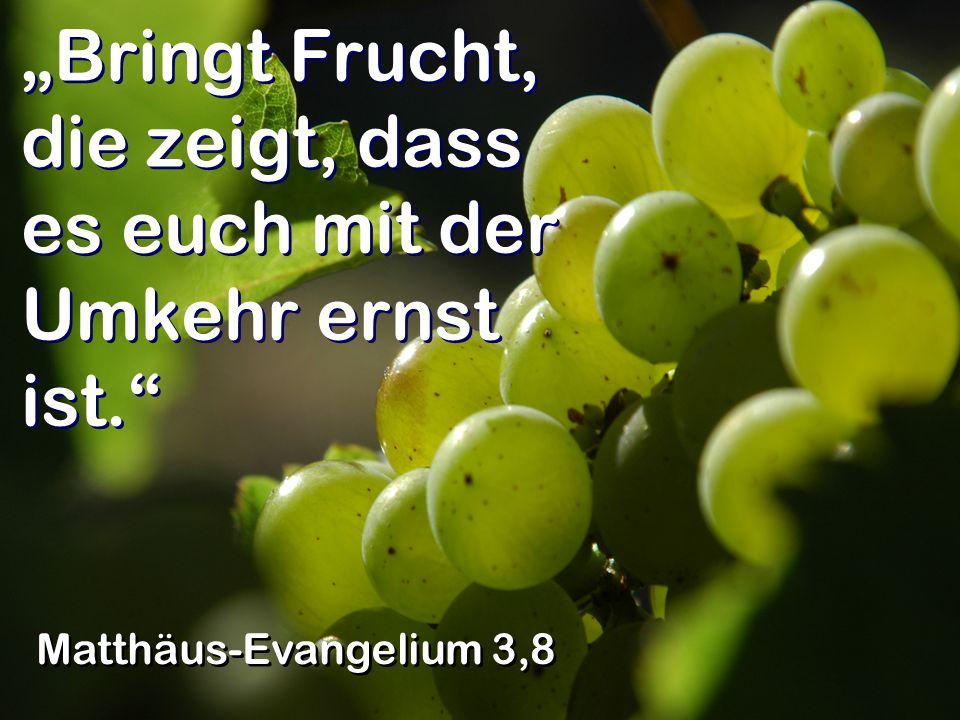 Bringt Frucht, die zeigt, dass es euch mit der Umkehr ernst ist. Matthäus-Evangelium 3,8