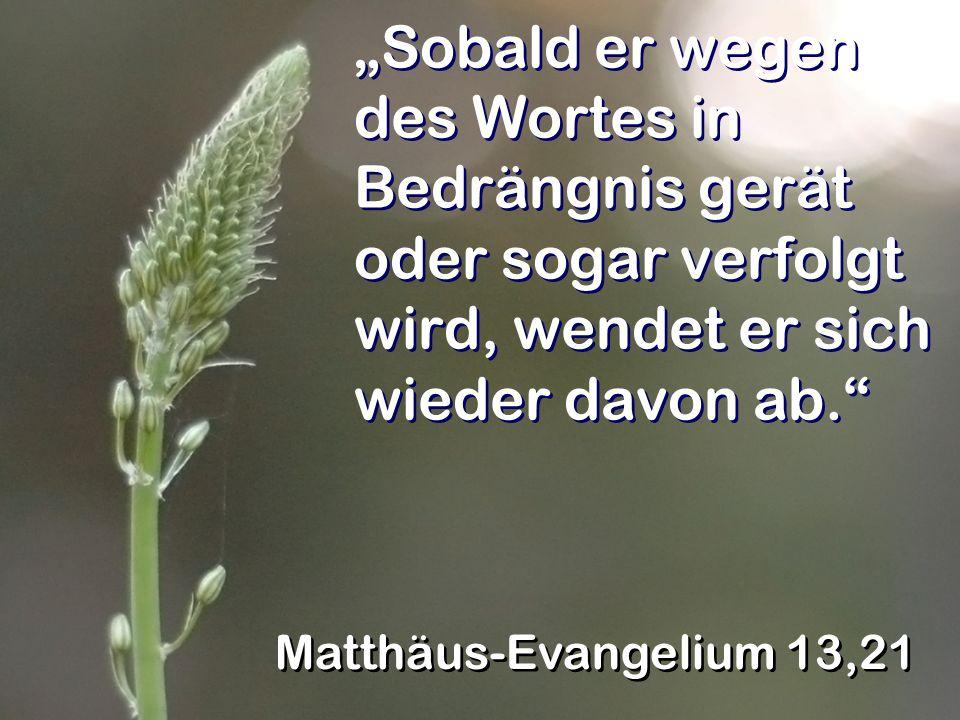 Sobald er wegen des Wortes in Bedrängnis gerät oder sogar verfolgt wird, wendet er sich wieder davon ab. Matthäus-Evangelium 13,21