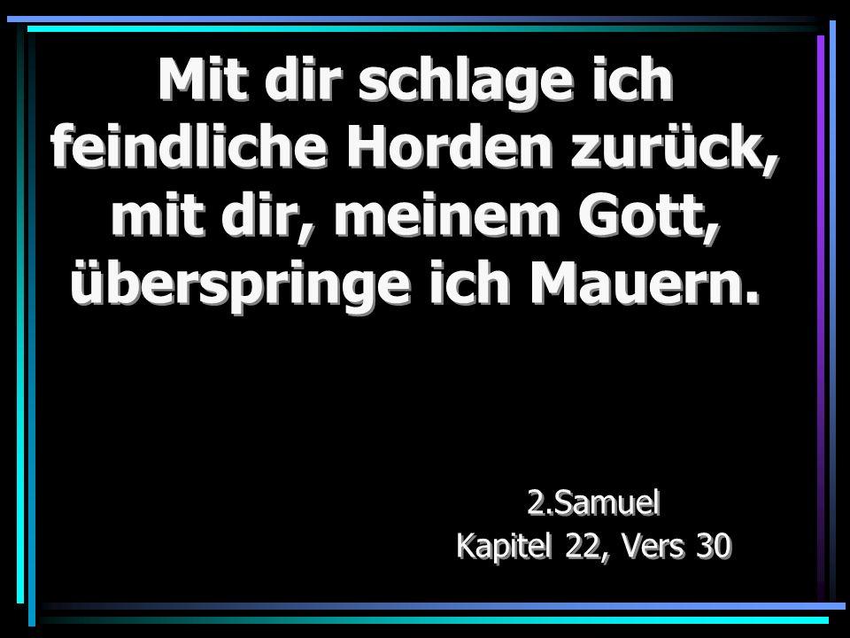 Mit dir schlage ich feindliche Horden zurück, mit dir, meinem Gott, überspringe ich Mauern. 2.Samuel Kapitel 22, Vers 30 2.Samuel Kapitel 22, Vers 30