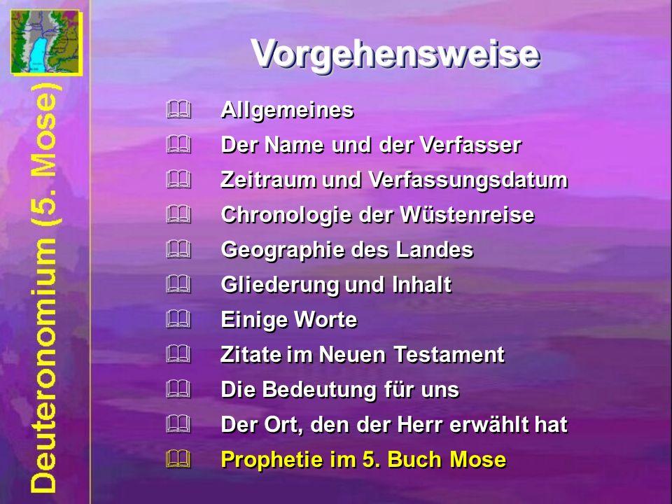 Vorgehensweise Vorgehensweise Allgemeines Der Name und der Verfasser Zeitraum und Verfassungsdatum Chronologie der Wüstenreise Geographie des Landes G