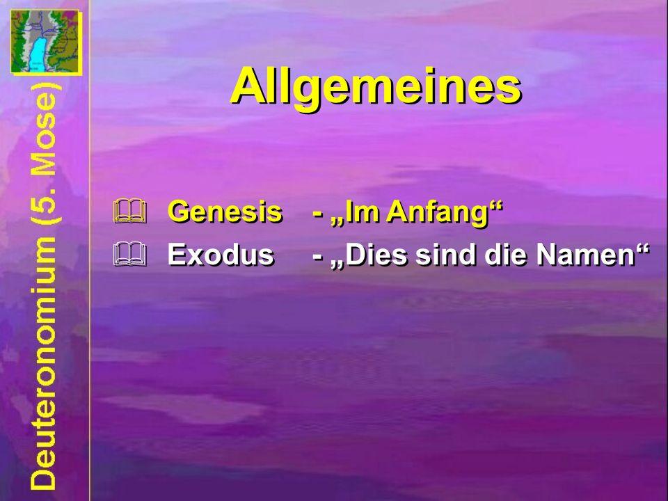 Allgemeines Genesis- Im Anfang Exodus- Dies sind die Namen Genesis- Im Anfang Exodus- Dies sind die Namen