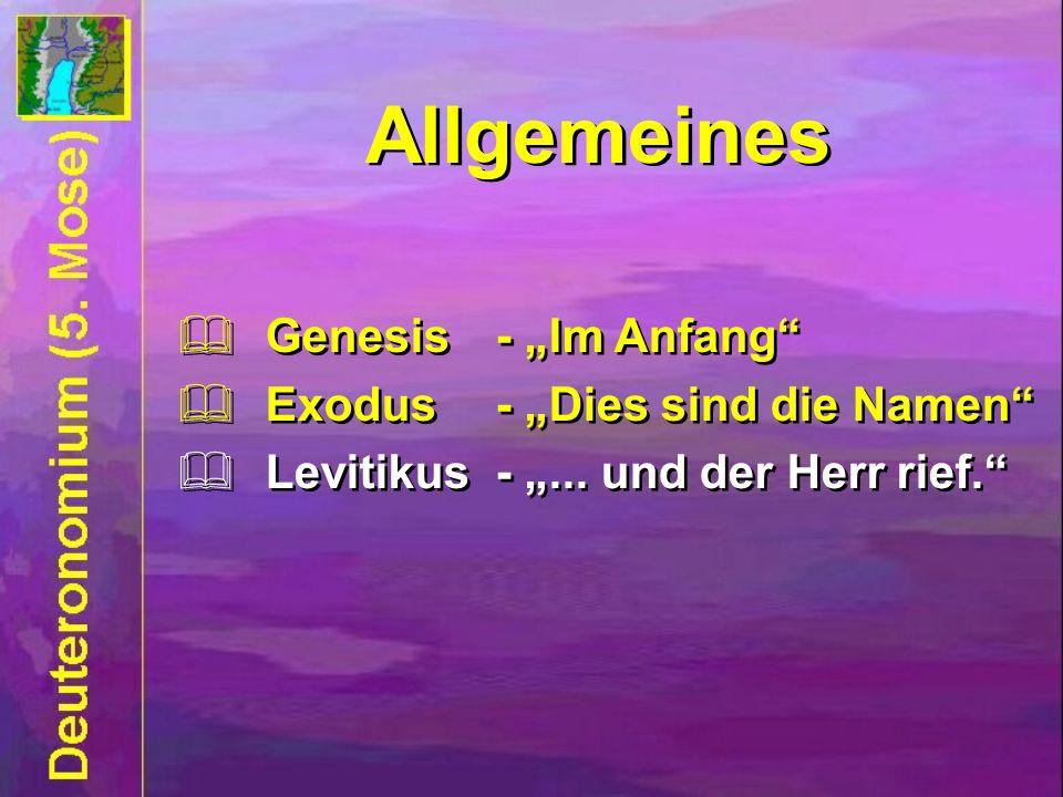 Allgemeines Genesis- Im Anfang Exodus- Dies sind die Namen Levitikus -... und der Herr rief. Genesis- Im Anfang Exodus- Dies sind die Namen Levitikus