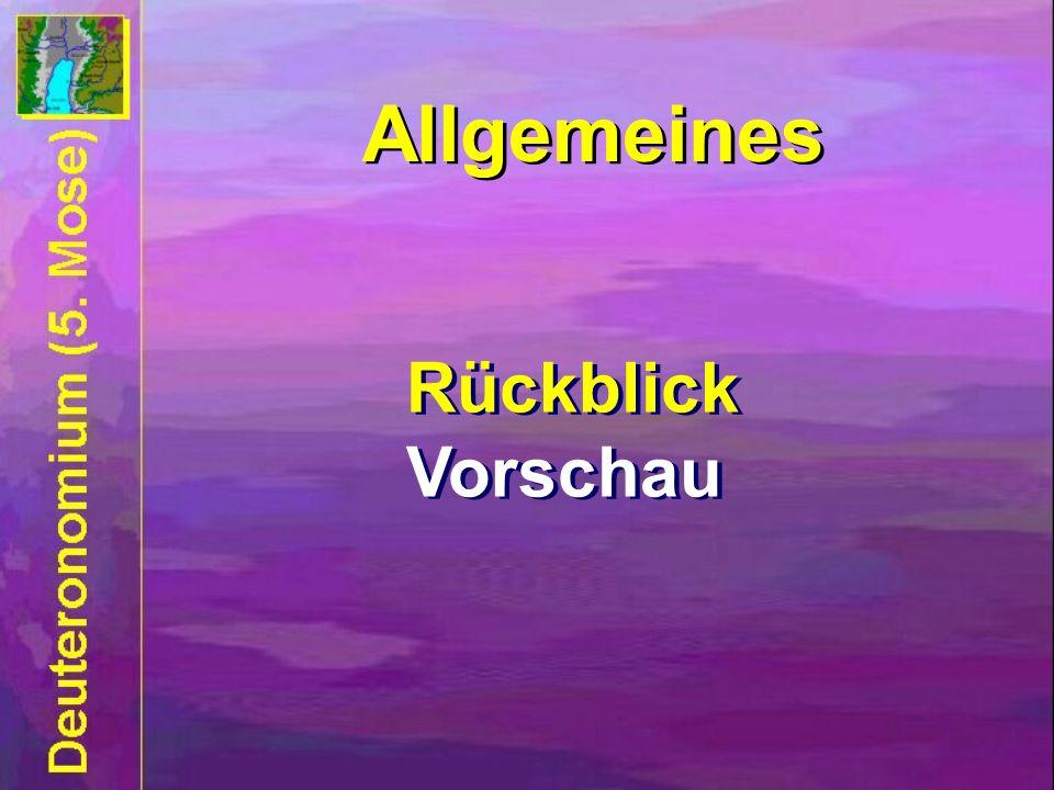 Rückblick Vorschau Rückblick Vorschau Allgemeines