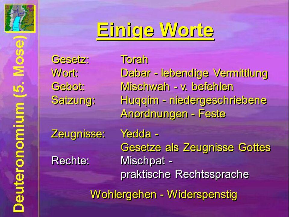 Einige Worte Gesetz:Torah Wort:Dabar - lebendige Vermittlung Gebot:Mischwah - v. befehlen Satzung:Huqqim - niedergeschriebene Anordnungen - Feste Zeug