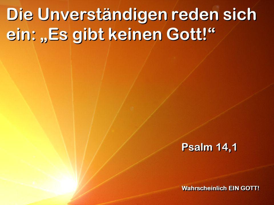 Die Unverständigen reden sich ein: Es gibt keinen Gott! Psalm 14,1 Wahrscheinlich EIN GOTT!
