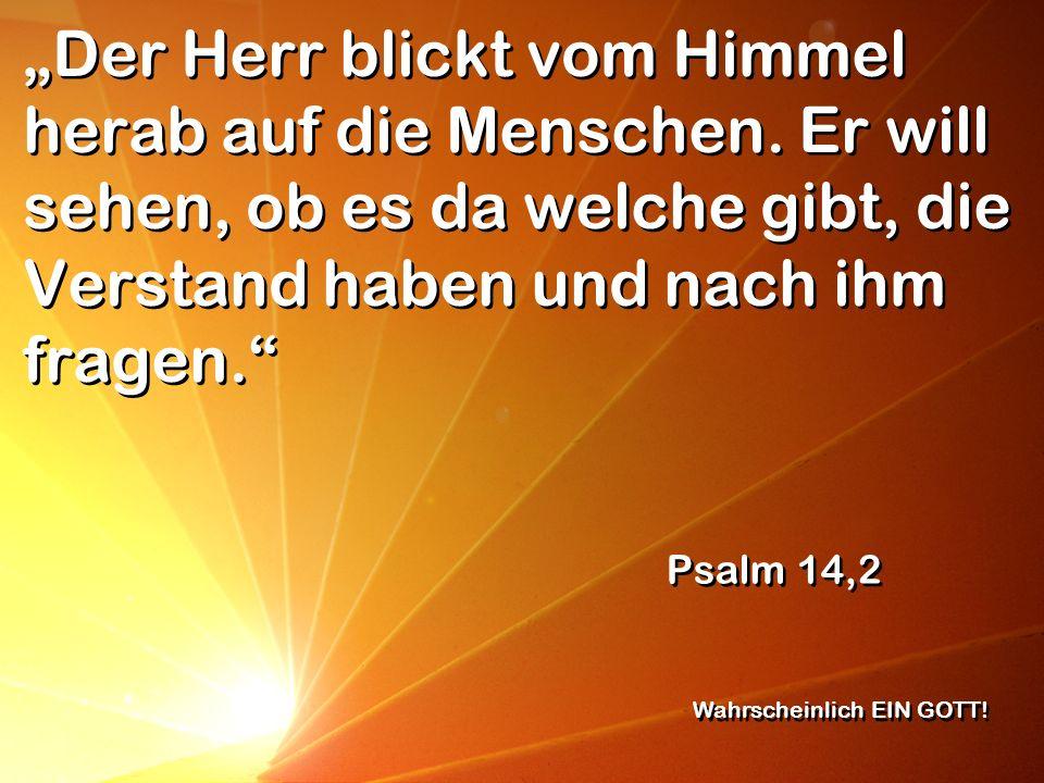 Der Herr blickt vom Himmel herab auf die Menschen. Er will sehen, ob es da welche gibt, die Verstand haben und nach ihm fragen. Psalm 14,2 Wahrscheinl
