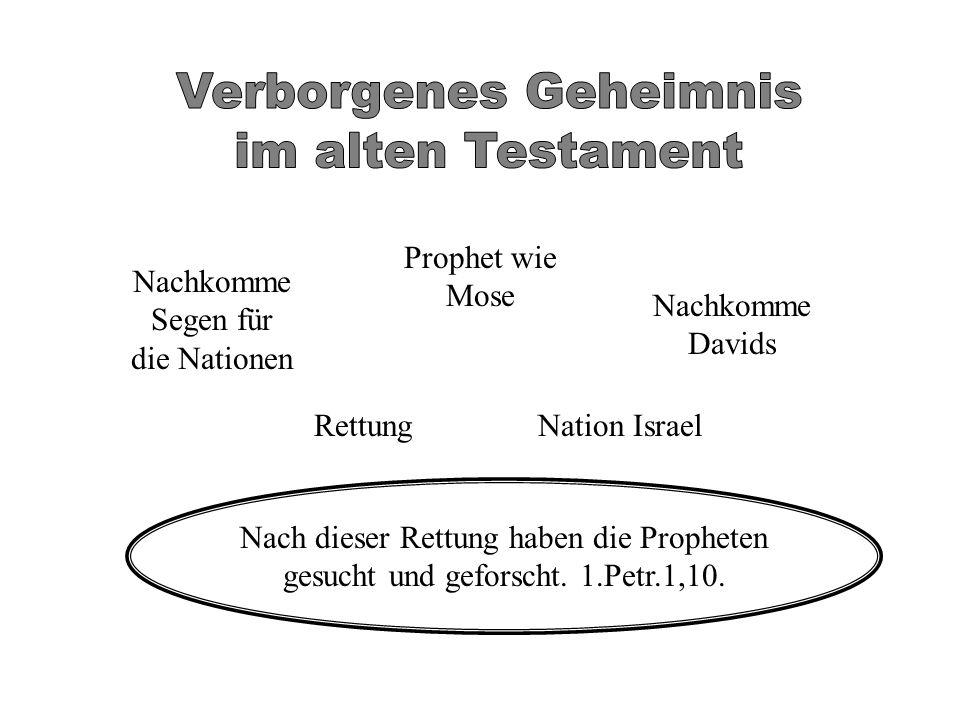 Rettung Nachkomme Segen für die Nationen Nation Israel Prophet wie Mose Nachkomme Davids Nach dieser Rettung haben die Propheten gesucht und geforscht