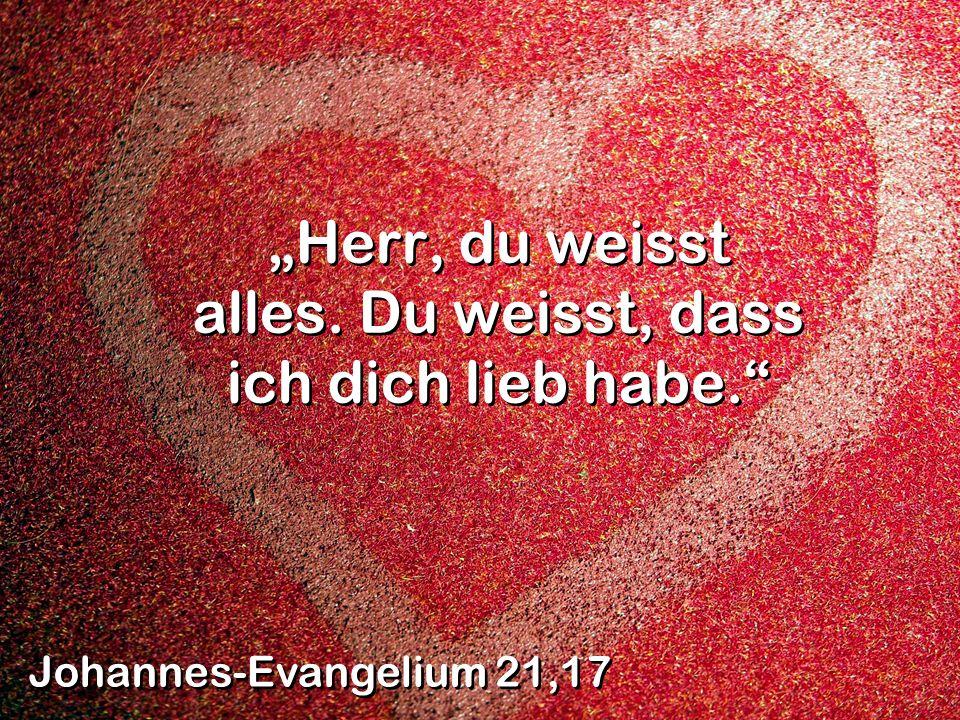 Herr, du weisst alles. Du weisst, dass ich dich lieb habe. Johannes-Evangelium 21,17