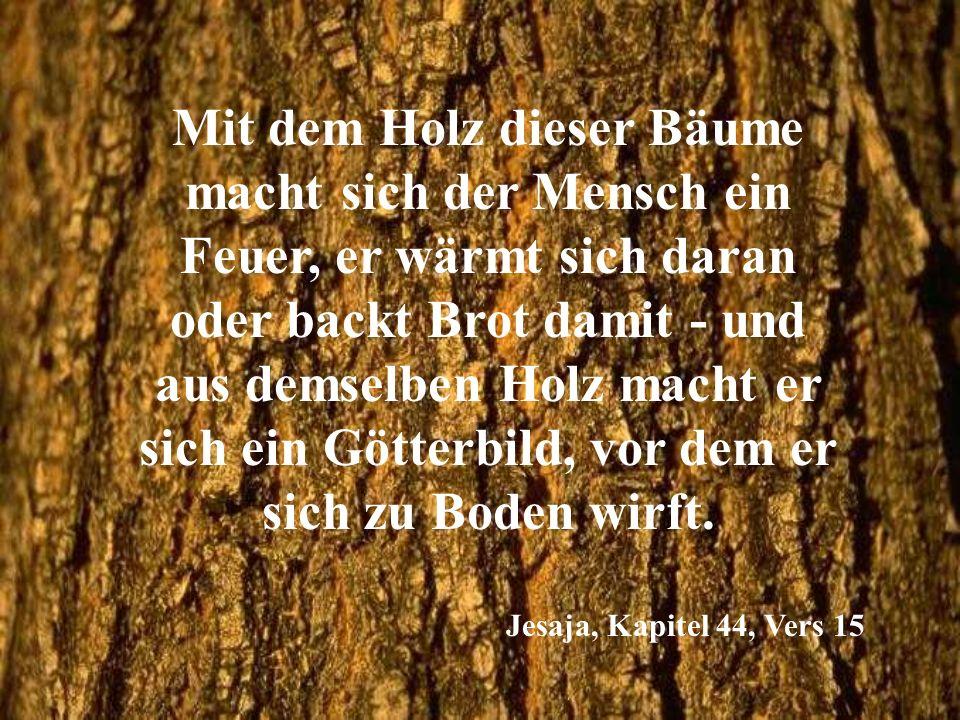 Mit dem Holz dieser Bäume macht sich der Mensch ein Feuer, er wärmt sich daran oder backt Brot damit - und aus demselben Holz macht er sich ein Götter