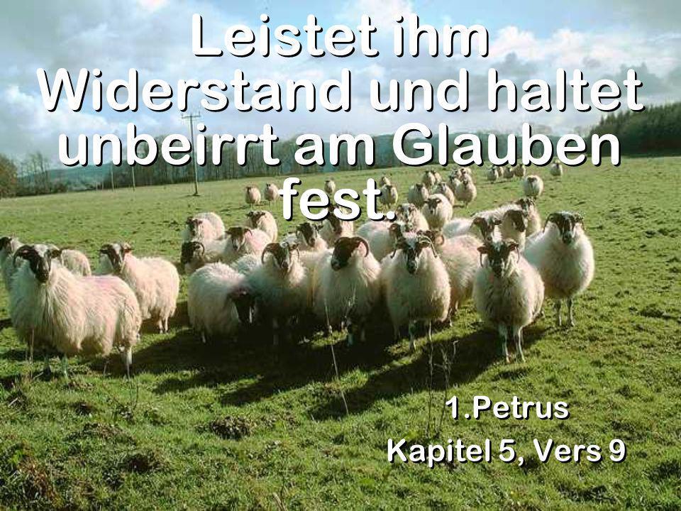 Leistet ihm Widerstand und haltet unbeirrt am Glauben fest. 1.Petrus Kapitel 5, Vers 9 1.Petrus Kapitel 5, Vers 9