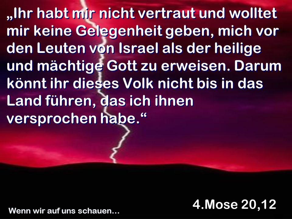 Ihr habt mir nicht vertraut und wolltet mir keine Gelegenheit geben, mich vor den Leuten von Israel als der heilige und mächtige Gott zu erweisen. Dar