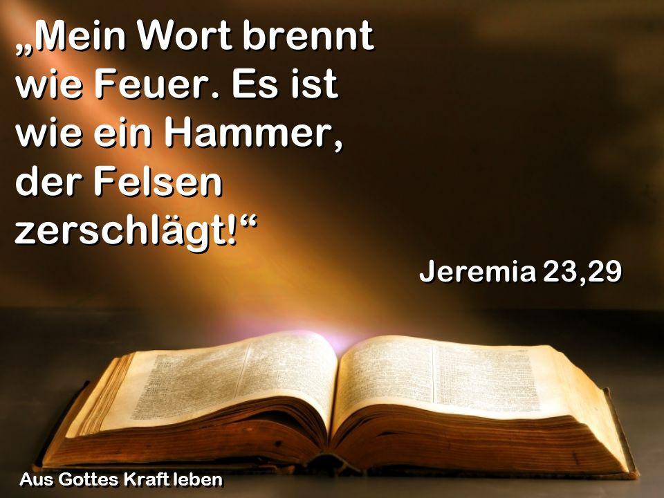 Mein Wort brennt wie Feuer. Es ist wie ein Hammer, der Felsen zerschlägt! Jeremia 23,29 Aus Gottes Kraft leben