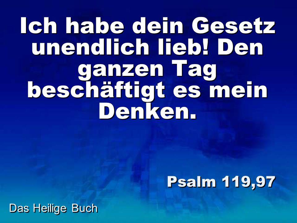 Ich habe dein Gesetz unendlich lieb! Den ganzen Tag beschäftigt es mein Denken. Psalm 119,97