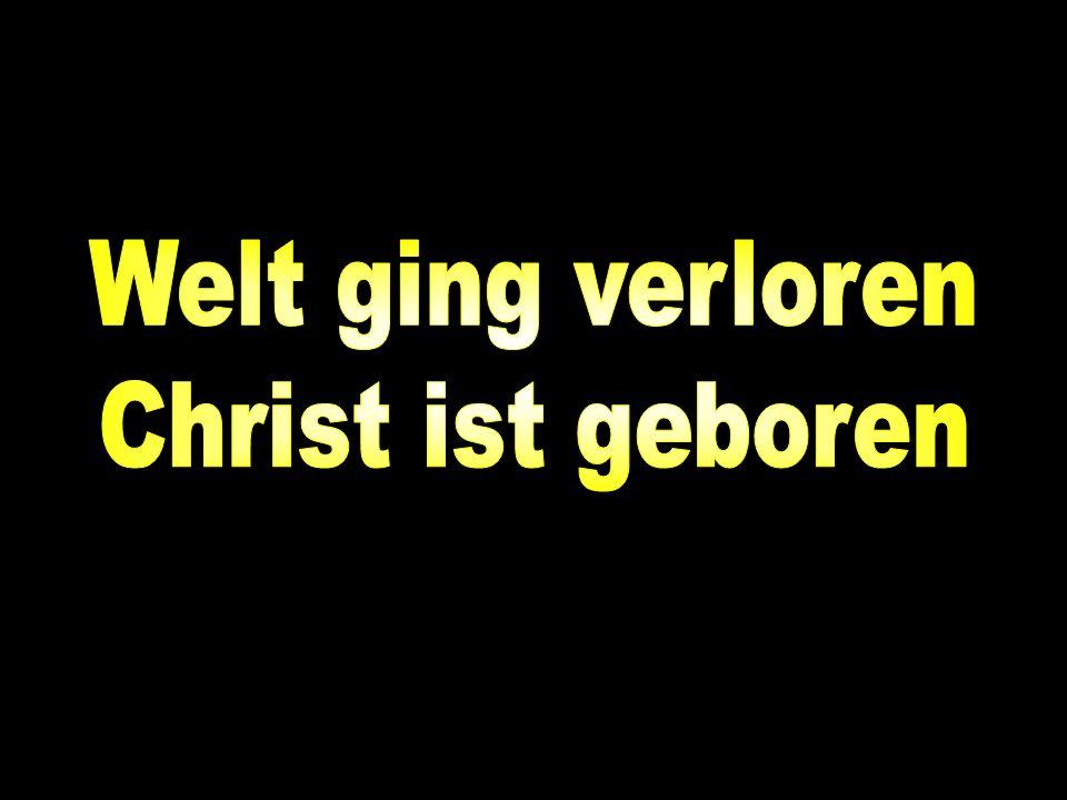 »Gross ist von jetzt an Gottes Herrlichkeit im Himmel; denn sein Frieden ist herabgekommen auf die Erde zu den Menschen, die er erwählt hat und liebt!« Lukas Evangelium, Kapitel 2, Vers 14