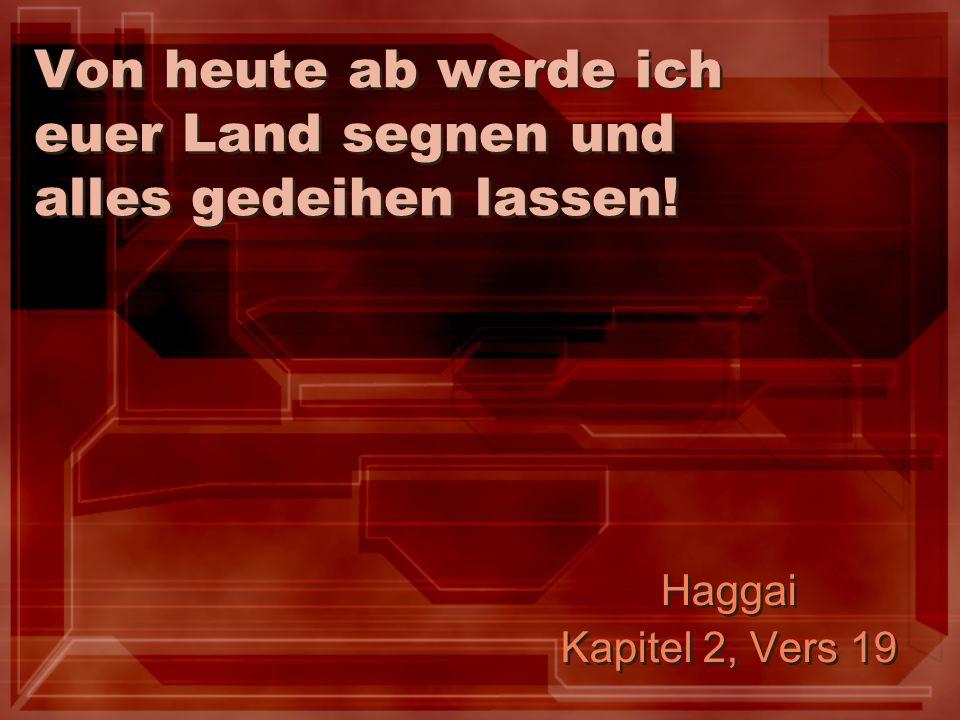 Von heute ab werde ich euer Land segnen und alles gedeihen lassen! Haggai Kapitel 2, Vers 19 Haggai Kapitel 2, Vers 19