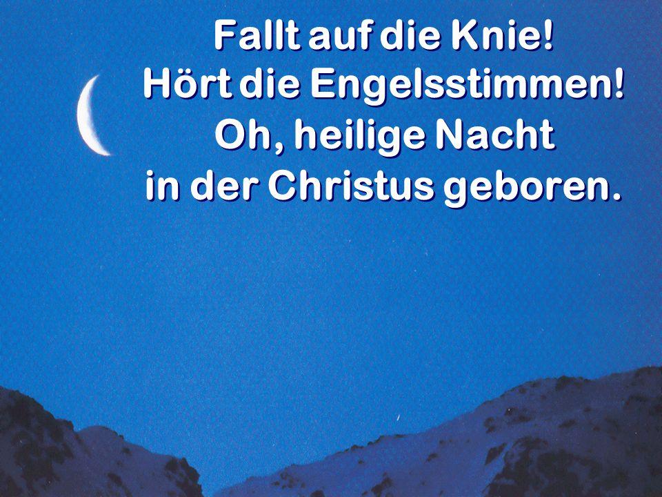 Fallt auf die Knie! Hört die Engelsstimmen! Oh, heilige Nacht in der Christus geboren. Fallt auf die Knie! Hört die Engelsstimmen! Oh, heilige Nacht i