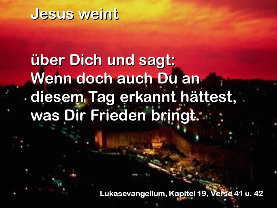 Jesus weint über Dich und sagt: Wenn doch auch Du an diesem Tag erkannt hättest, was Dir Frieden bringt. Jesus weint über Dich und sagt: Wenn doch auc